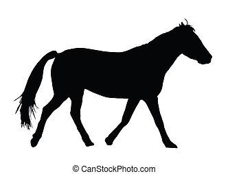 wielki, portret, koń, sylwetka, galopowanie