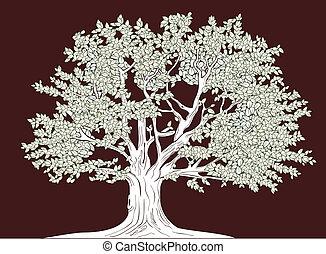 wielkie drzewo, wektor, graficzny, rysunek