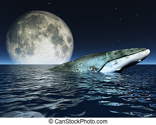 wieloryb, na, oceany, powierzchnia, z, pełnia księżyca