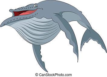 wieloryb, rysunek