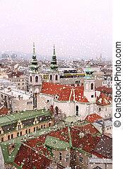 wien, dachenden, cityscape, mit, schnee