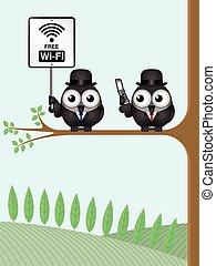 wifi, libero, segno