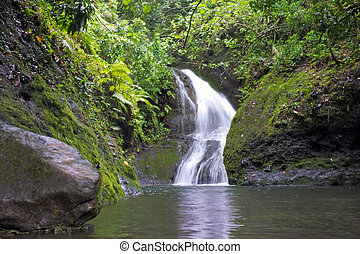 Landscape view of Wigmore's Waterfall Rarotonga, Cook Islands