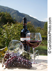 wijn fles, wineglasses, rood