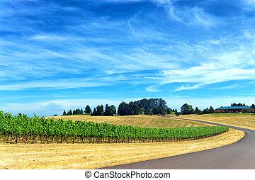 wijngaard, doorreis, straat