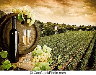wijngaard, wijntje