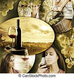 wijntje, en, wijngaard