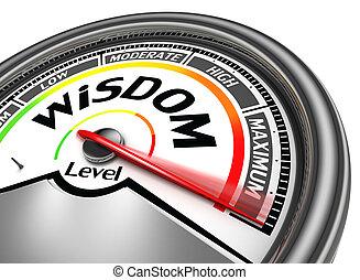 wijsheid, niveau, conceptueel, meter