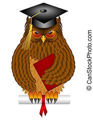 wijze oude uil, met, bevordering pet, en, diploma,...