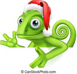 wijzende, kameleon, meldingsbord, kerstmuts, kerstmis