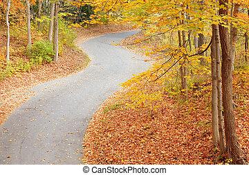 wikkeling, steegje, in, herfst