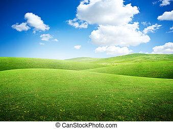 wikkeling, velden, groene