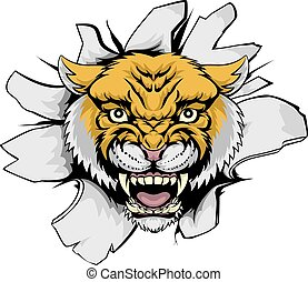 Wilcat Cougar Ripping Out - A cartoon Wilcat Cougar mascot...