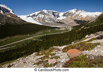 Wilcox Pass, and the Columbia Icefield, Jasper National Park, Al