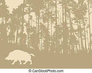 wild, achtergrond, beer, hout, silhouette