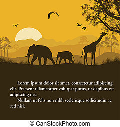 Wild african animals silhouettes poster
