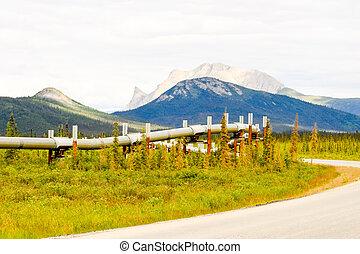 Wild Alaskan pipeline