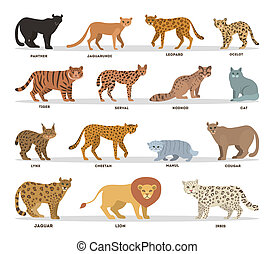 Wild and dometic cats set. Collection of cat family with ...