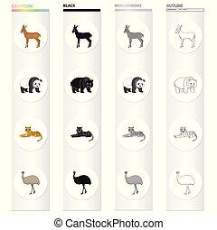 Wild animal antelope, panda, tiger, Australian ostrich emu....