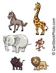 Wild Animal Group