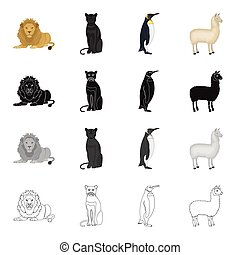 Wild animal predator, lion, panther, bird penguin, llama. Different kinds of animal set collection icons in cartoon black monochrome outline style vector symbol stock illustration web.