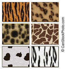 Wild animal - Six wild African animal skin texture ...