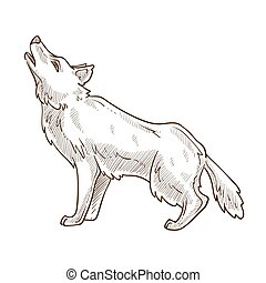 Wild animal, wolf howling at moon isolated sketch