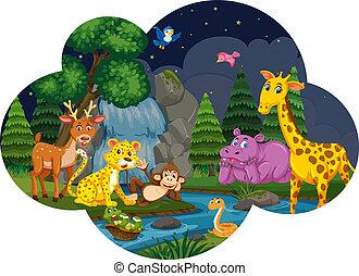 Wild animals at the river night scene