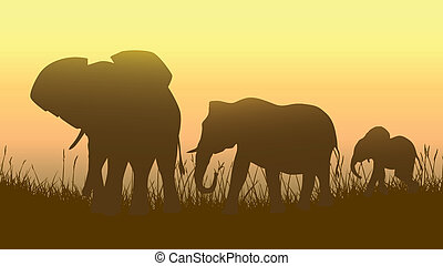 Wild animals in sunset savanna.