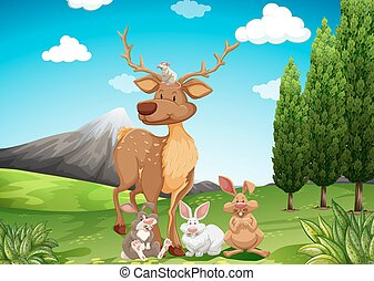 Wild animals in the field