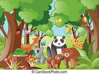 Wild animals in the jungle