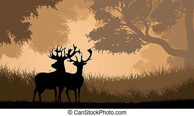 Wild animals in wood.