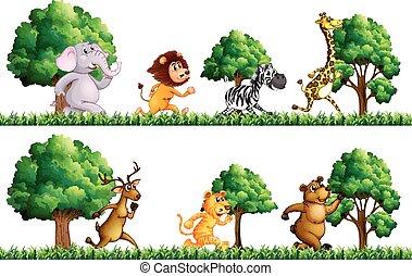 Wild animals running in the field