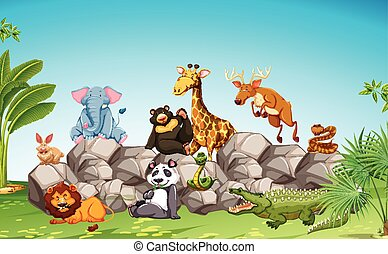 Wild animals sitting on the rock