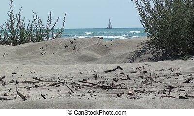 Wild beach and a yacht