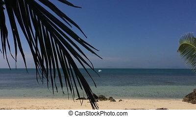 Wild beach at sunny day