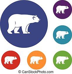 Wild bear icons set