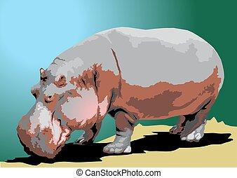 wild big hippo