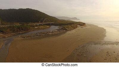 Wild Birds Fish Feed River Mouth Pacific Ocean Bridge Oregon...