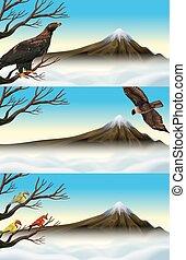 Wild birds on the branch