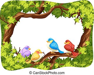 Wild birds on the branch of the tree
