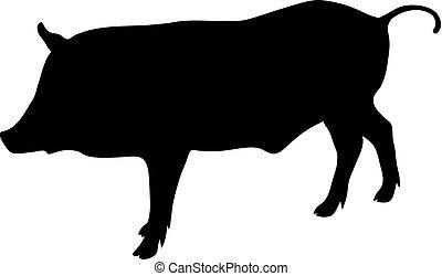 wild boar black silhouette on white background of vector illustration