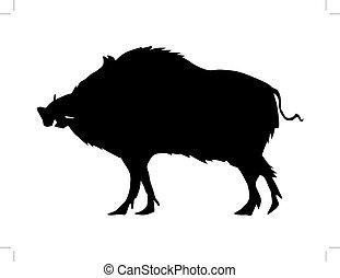 wild boar - silhouette of wild boar