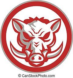 Wild Boar Razorback Head Angry Circle Retro - Illustration ...