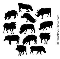 Wild Boars Silhouette