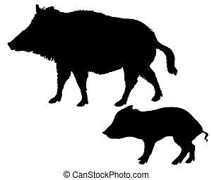 Wild boars silhouettes