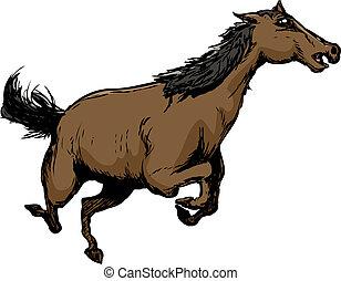 Wild Brown Horse Running