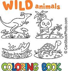 wild, buch, tiere, färbung