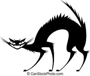 Black wild cat isolated on white background