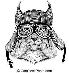 Wild cat Lynx Bobcat Trot Wild animal wearing biker...